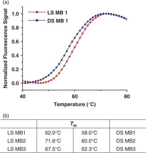 Melting temperature of DS and LS MBs. (a) Melting temperature profiles of DS and LS MB 1 and (b) comparisons of stem melting temperatures of MBs. LS MBs generally showed much higher melting temperature, about 5–10°C, compared to their counterparts.