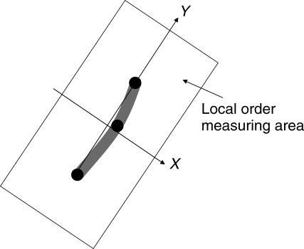 Local Order Measuring Domain
