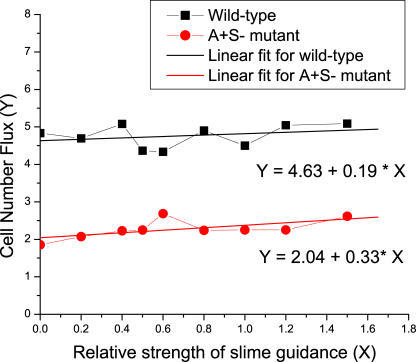 The Dependence of Cell Number Flux on the Relative Slime Strength