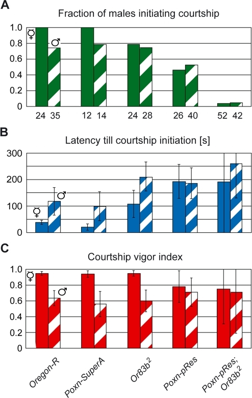 Gustatory, but not olfactory, signals of the courted fly contribute to the heterosexual orientation of the courting male.(A) The fraction of males initiating courtship, (B) the average latency (in seconds) till courtship initiation, and (C) the courtship vigor index were measured in single-choice courtship assays, performed under dim red light with courting males of indicated genotypes and decapitated receptive Ore-R virgins (V, filled columns) or decapitated mature Ore-R males (♂, hatched columns).