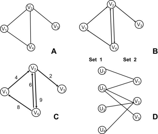 Undirected, Directed, Weighted, Bipartite graphs. A. Undirected Graph: V = {V1, V2, V3, V4}, /V/ = 4, E = {(V1, V2), (V2, V3), (V2, V4), (V4, V1)}, /E/ = 4. B. Directed Graph: V = {V1, V2, V3, V4}, /V/ = 4, E = {(V1, V2), (V2, V3), (V2, V4), (V4, V1), (V4, V2)}, /E/ = 5. C. Weighted Graph: V = {V1, V2, V3, V4}, /V/ = 4, E = {(V1, V2, V4), (V2, V3, V2), (V2, V4, V9), (V4, V1, V8), (V4, V2, V6)}, /E/ = 5. D. Bipartite graph: V = {U1, U2, U3, U4, V1, V2, V3}, /V/ = 7, E = {(U1, V1), (U2, V1), (U2, V2), (U2, V3), (U3, V2), (U4, V2)}, /E/ = 6.