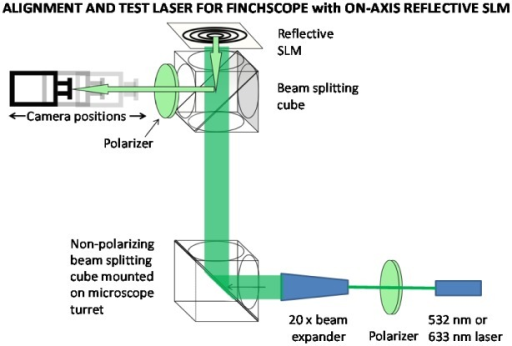 Microscope configuration for SLM testing and alignment. A Coherent DPSS 532 nm or Thorlabs 633 nm laser passed through a Glan-Thompson polarizer and 20 × beam expander. The expanded laser beam was confirmed to be coherent and collimated with a shearing plate interferometer. The beam was directed to the microscope through a beam splitting cube mounted on the microscope turret which allowed the expanded laser beam to enter the microscope, reflect off the SLM and be directed to the camera or in some cases a power meter. Moving the turret to another position with a microscope objective made it possible to first obtain precision alignment of the microscope using the lasers and then to switch to imaging mode with objectives. The distance between the camera and SLM (zh) was varied by moving the camera along a precision track to confirm the focal lengths and characteristics of diffractive lens patterns.