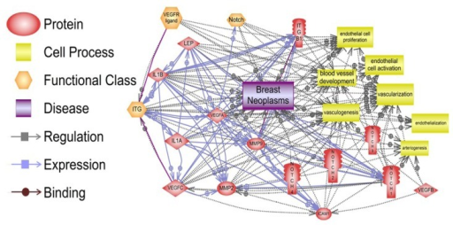 Relationships between pro-angiogenic effects of leptin signaling and breast neoplasms, vascularization, and endothelial cell function. Many signaling pathways show the connections between regulation, expression and binding of leptin, IL-1, adhesion molecules (ICAM and integrins), Notch, VEGF/VEGFR and MMPs and, their impact on vessel development and endothelial cell function, which are essential for breast neoplasm development. The summary of the data processed by the Program Studio 9 [19] and specific molecular and cellular relationships can be found in the supplementary material. Notes: ITG (integrins); ITGB1 (integrin β1); IL-1A and B (IL-1α and β); Lep (leptin); ICAM (CD54, intercellular adhesion molecule 1).