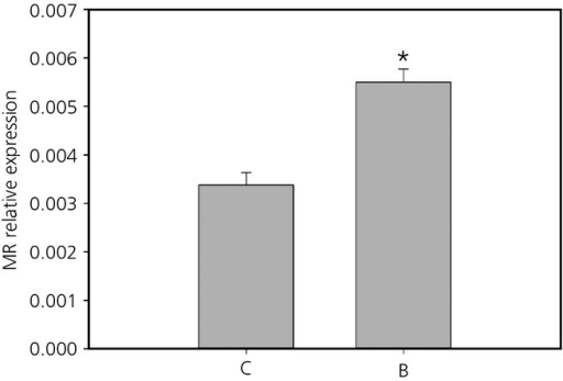Mean ± SEM relative expression of the mineralocorticoid receptor (MR) in the hypothalamus of prenatal control (C) and prenatally stressed (B) quail. *Statistically significant difference.