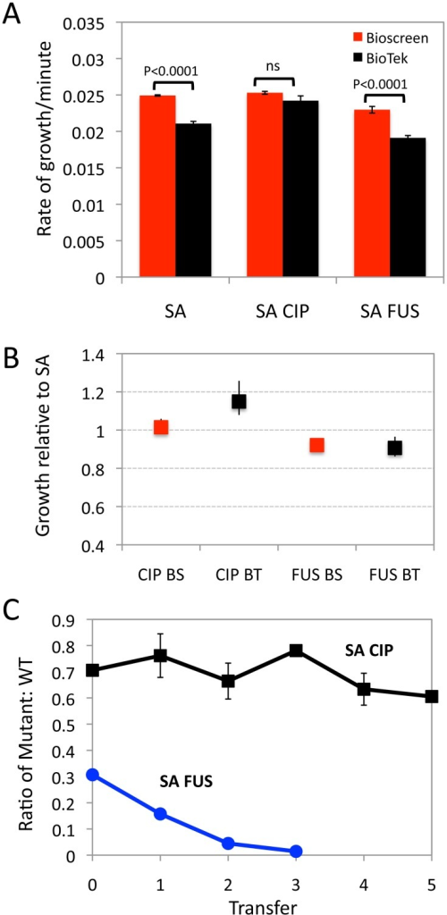 Malthusian parameter and pairwise competition estimates of fitness for S. aureus ciprofloxacin and fusidic acid susceptible and resistant mutants (A) Growth rates estimates from three S. aureus strains using a Bioscreen (BS, red bar) and BioTek (BT, black bar) plate readers. SA is an antibiotic sensitive strain, SA-CIP is a ciprofloxacin resistant strain and SA-FUS is a fusidic acid resistant strain. (B) Malthusian parameters relative to wild type (SA), (Bioscreen red BioTek black) and Bootstrap-calculated confidence intervals. (C) Changes in the ratio of the antibiotic resistant mutants and SA WT in pairwise competition SA-CIP (black) and SA-FUS (blue), mean and standard deviation of the ratios from three independent competition experiments.