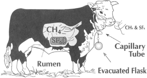 Illustration of the SF6 tracer technique. Reprinted with permission from [22]. Copyright (1994) American Chemical Society.