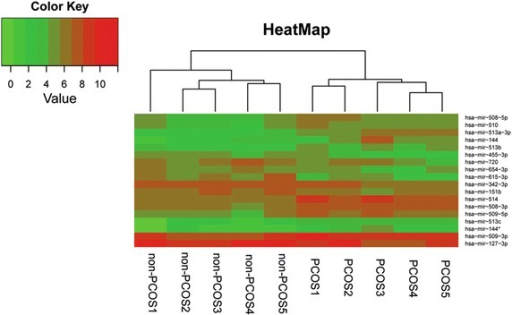 Unsupervised hierarchical clustering of deep sequencing data. Heatmap of miRNA expression data after hierarchical clustering. The Euclidean distance measure and the average linkage clustering algorithm were used. The branching pattern was illustrated in a dendrogram.