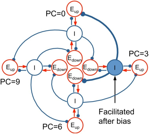 Idealized conceptual model for Eup and Edown units on a pitch class circle. Four tri-unit subpopulations (Eup, Edown, I) at representative PC's (0, 3, 6, 9 st), including their interactions, are shown to illustrate the mechanism of the full network model (Equation 2). I units (blue) inhibit the Eup unit below (lower CF) and the Edown unit above (higher CF). When a bias tone is presented at PC = 3, the synaptic strength of the I unit at PC = 3 is facilitated, resulting in more inhibition to the Eup unit at PC = 0 and the Edown unit at PC = 6. Hence, T1 at PC = 0 invokes a weaker response in Eup (D < 0 for T1, perceived as descending), while T2 at PC = 6 results in a weaker response in Edown (D > 0 for T2, perceived as ascending).