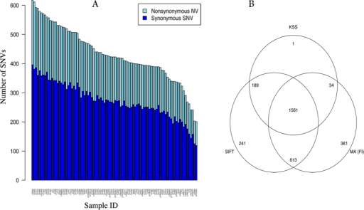 "Single nucleotide kinase variants (SNVs) in 92 breast tumors.(A) Barplot of number of synonymous, non-synonymous and total SNVs for each of the 92 samples ordered by the total number of SNVs per sample. (B) Venn diagram showing the predicted functional impact of 3203 unique non-synonymous SNVs by 3 different functional prediction methods: SIFT scores, Mutation Assessor functional importance (FI) scores, and Kinase Specific functional effect score (KSS). The cutoff used for the three methods to categorize the variants as functionally important were: ""high/medium"" for Mutation Assessor, <0.05 for SIFT, and ""Yes"" for KSS deleterious prediction."