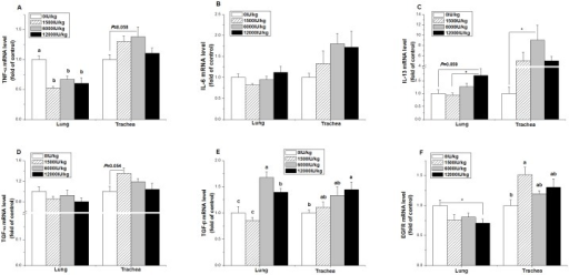 Effect of the dietary vitamin A supplemental levels (0, 1500, 6000, and 12000 IU/kg) on the TNF-α (A), IL-6 (B), IL-13 (C), TGF-α (D), TGF-β (E), and EGFR (F) mRNA expression levels in the trachea and lung tissue.Data are presented as the means ± SEM (n = 9); a, b, c: Means with different letters differ significantly, P < 0.05; *: P < 0.05.