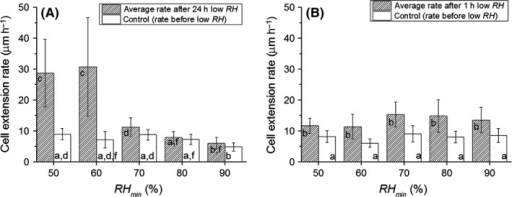 Average growth rates of hyphae growing on a gypsum substrate, before and after exposure to a period of RHmin with duration Δt of 24 h (A) or 1 h (B). RH = 97% before and after the period of low RH. Error bars represent the standard deviation in the individual results. Welch's one‐way ANOVA shows that the averages are significantly heterogeneous (F9,55 = 30, P = 2.7e‐18) for (A), (F9,43 = 14, P = 3.69e‐18) for (B). Averages with a different label (a, b,…) are statistically different (Games‐Howell post hoc tests, P = 0.05).