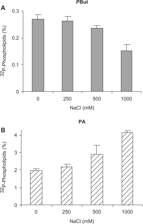 Salinity stress inhibits PLD activity in rice leaves. Rice leaf cuts were pre-labeled O/N with 32Pi and then subjected to different concentration of NaCl (i.e. 0, 250, 500 and 1,000 mM) for 30 min, in the presence 0.5% (v/v) n-butanol as transphosphatidylation substrate for PLD (see Materials and Methods). Lipids were extracted and separated by ethyl acetate TLC. Radioactivity was quantified by phosphoimaging. Radioactivity levels of PBut (A) and PA (B) are shown.