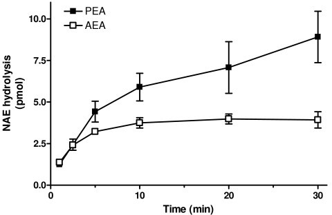 Time course of hydrolysis of AEA (anandamide) and PEA (N-palmitoylethanolamine) in BV2 microglial cells. Data are means ± SEM of six independent experiments conducted in triplicate.