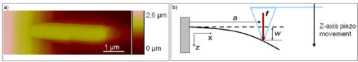 Single NW mechanical characterization. (a) AFM tapping-mode image of a GaN NW. (b) Principle of mechanical measurement on a single NW where w is the NW deflection when a force f is applied at a position a. The cantilever deflection is measured as an indirect measurement of w.