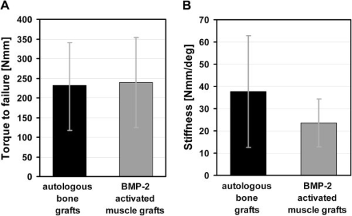 Mechanical properties of bones. (A) Torque to failure and (B) stiffness of femora treated with autologous bone grafts and BMP-2 activated muscle grafts 8 weeks after surgery. Values given represent means ± SD; (autologous bone grafts, n = 6; BMP-2 activated muscle grafts, n = 6). No statistically significant difference in torque to failure (p = 0.87) or stiffness of femora receiving autologous bone grafts versus BMP-2 activated muscle grafts could be determined (p = 0.42).