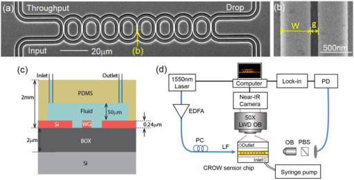 (a) Scanning-electron microscope image of the fabricated eight-element microring-based CROW. (b) Zoom-in-view image of an inter-cavity coupling region. (c) Schematic of the cross-sectional view of the optofluidic chip. (d) Schematic of the experimental setup. EDFA: erbium-doped fiber amplifier, PC: polarization controller, PBS: polarized beam splitter, LWD OB: long-working-distance objective lens, OB: objective lens, PD: photodetector.