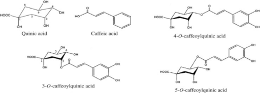 Structure of caffeic acid and its derivatives (IUPAC numbering).