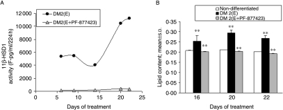 (A) Effect of chronic exposure to the selective 11β-HSD1 inhibitor                        PF-877423 on subcutaneous s–v cells. 11 β-HSD1 enzyme                        inhibition by 300 nM PF-877423 measured as the production of                        cortisol (day 6: 154±8 vs 5387±182; day 9:                        128±1 vs 5489±230; day 14: 174±18 vs                        4041±106; day 20: 409±27 vs 10443±78; day                        22: 330±7 vs 11218±193 pg/ml per                        24 h, mean±s.d.,                        P<0·001, n=3,                        E− or E+PF-877423-treated respectively). (B) Inhibition                        of lipid accumulation by 300 nM PF-877423 in subcutaneous                        stromal–vascular cells (day 16:                        0·25±0·03 vs                        0·20±0·01; day 20:                        0·3±0·02 vs                        0·20±0·01; day 22:                        0·27±0·01 vs                        0·19±0·01; OD (500/660 nm),                            n=3, E− or                        E+PF-877423-treated respectively), P values:                            **P<0·01,                        ***P<0·001.