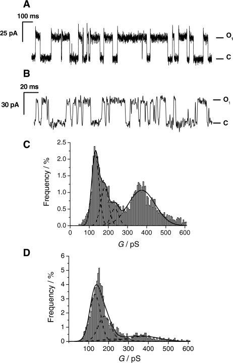 Channel recordings of 3 in nano-BLMs. a Characteristic current trace (channel opens upwards) of 3 obtained at +200 mV in 0.5 M KCl in the absence of NiCl2. b Characteristic current trace (channel opens upwards) of 3 obtained at +200 mV in 0.5 M KCl in the presence of NiCl2. c Histogram analysis of the observed conductance states of 3 in nano-BLMs up to 600 pS [3,556 events, bin width: 5 pS, normalized to all events (4,524)] in the absence of NiCl2. d Histogram analysis of the conductance states of 3 in the presence of 2.5–5 μM NiCl2 up to a conductance of 600 pS [2,029 events, bin width: 5 pS, normalized to all events (2189)]. The solid lines are the results of fitting four Gaussian distributions (dotted lines) to the histograms