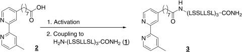 Synthesis of 3