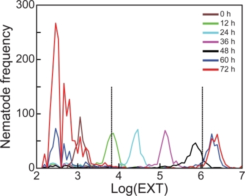 C. elegans growth from L1 to adult.Nematode frequency distributions of log(EXT) values for control nematode cohorts sampled at loading 0 h (brown) and following 12 (green), 24 (light blue), 36 (purple), 48 (black), 60 (dark blue), and 72 (red) h incubations. Large modes to the left of the loaded nematodes (log(EXT) ≈2–3) indicate the second generation of embryos corresponding to 60 and 72 h cohorts. Vertical lines at log(EXT)  = 3.83 and 6.04 divide the growth response into three sections: initial growth from starved L1s, larval growth from L2 to L4, and adult growth, respectively.