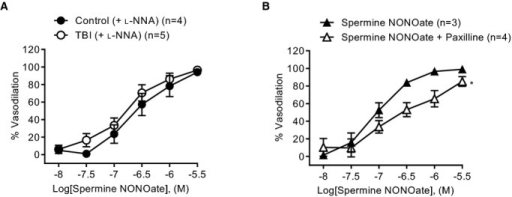 Sensitivity of vascular smooth muscle to exogenous nitric oxide in cerebral arteries from control and TBI animals. Summary data showing the vasodilatory response to addition of spermine NONOate in the presence of (A) l‐NNA (100 μmol/L) and (B) paxilline (1 μmol/L) in arteries from control (n=3) and TBI (n=4) animals. Repeated‐measures one‐way ANOVA, *P<0.05. TBI indicates traumatic brain injury.
