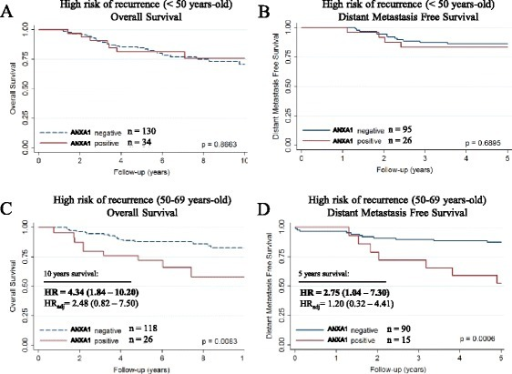 Adjuvant treatment response. Survival curves, crude hazard ratios (HR) and adjusted hazard ratios (HRadj) according to ANXA1 expression in patients from BCAC with high risk of recurrence (HER2+ and/or pN+) who received anthracycline-based adjuvant chemotherapy. Overall survival and disease-free survival in (a, b) patients under 50 years old and (c, d) patients over 49 and under 70 years old. Hazard ratios were adjusted for: age of diagnosis; tumor grade; tumor size; lymph node metastasis; ER/PR status; and HER2 status. Note: low risk of recurrence was defined as: 35 years old or older; lymph node negative; tumor size ≥2 cm with any grade or tumor size ≥1 cm with tumor grade ≥2; high risk of recurrence was defined as: HER2+ and/or lymph node positive. ANXA1: Annexin A1; BCAC: Breast Cancer Association Consortium; HR: Hazard ratio