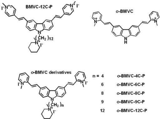 Chemical structures of BMVC-12C-P, o-BMVC, and o-BMVC derivatives.