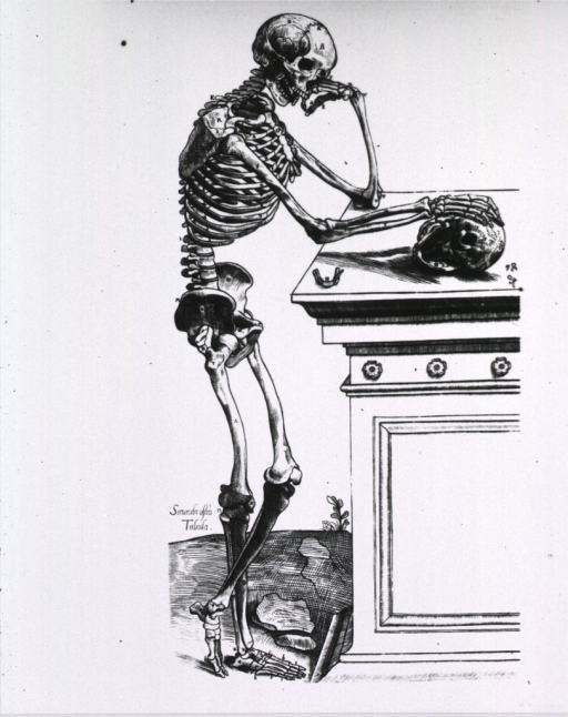 <p>Full length right profile view, standing, of the human skeleton; left elbow resting on sarcophagus, head on hand; right hand rests on a skull; legs crossed below the knee.</p>