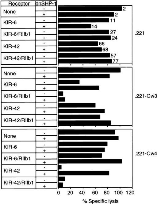 SHP-1 is not required for inhibition of NK cells by  FcγRIIb1. The KIR-negative human NK92 cell line was infected with  recombinant vaccinia viruses expressing KIR-6, KIR-42, or their chimeric derivatives bearing the cytoplasmic tail of human FcγRIIb1 (KIR-6/RIIb1 and KIR-42/RIIb1), alone or with dominant negative SHP-1  (dnSHP-1), as indicated. The mean fluorescence intensity of staining with  mAbs GL183 (for KIR-6 and KIR-6/RIIb1) and EB6 (for KIR-42 and  KIR-42/RIIb1) is indicated next to each bar in the .221 panel. Lysis of  .221, .221-Cw3, and .221-Cw4 targets was determined in a 4-h 51Cr release assay at an E/T of 4. Similar results were observed at an E/T of 1  and in two independent experiments.