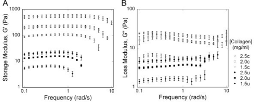 Frequency sweep of collagen gels under 1% controlled strain (average +/- standard error). (A) Storage Modulus; (B) Loss Modulus. Both the storage and loss moduli demonstrated significant increases with increasing collagen concentration and crosslinking (2-way ANOVA, P < 0.001). Key: c: crosslinked, u: untreated.
