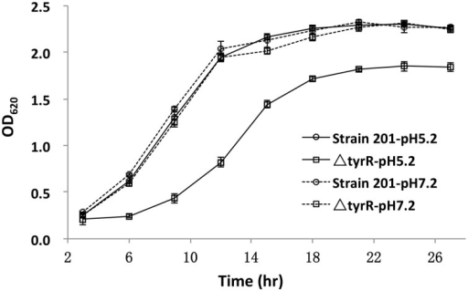 Growth curves of the WT and tyrR mutant strains under two different conditions. Overnight cultures of the WT strain 201 and tyrR mutant were used to inoculate fresh LB broth with pH 5.2 or 7.0. The OD620 values were recorded at fixed time points. Each time point is the average of two measurements and error bars represent standard deviations. The vertical arrows indicate the time point at which samples were removed for RNA extraction.