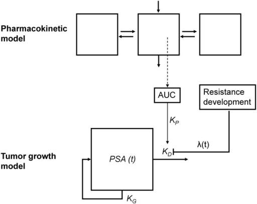 Schematic diagram of the disease progression model for the dynamics of prostate-specific antigen (PSA). KG, growth rate; KD, inhibition rate; λ, drug resistance development; AUC, predicted area-under-the-concentration-time curve.