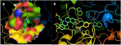 Visual results of docking of best designed AD drug candidate, berberastine-5C-pyrimidine, into modeled hAChE.(A) Ligand attachment conformation along the active site groove shown by solid surface ligand site. (B) Ligand attached with different residues of catalytic site, represented by sticks and colored according to the element type and element name is labeled. Active site residues are represented by sticks and enzyme by cartoons. Hydrogen bonding shown by yellow dashes and distance measured in Å.