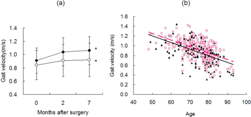(a) Four-meter gait velocity in male (closed symbols) and female (open symbols) cataract patients before and 2 and 7 months after surgery. Gait velocity increased continuously up to 7 months after surgery with statistical significance in both groups (*P < 0.05 vs preoperative velocity, paired t-test). (b) Scatter plot of gait velocity versus age of cataract patients before (closed symbols) and 2 months after (open symbols) surgery. Note that age was strongly correlated with gait velocity. The regression lines were y = −0.0136x + 1.8845; R2 = 0.2753 (solid line) for before surgery and y = −0.0134x + 1.9175; R2 = 0.2743 (dashed line) for after surgery.