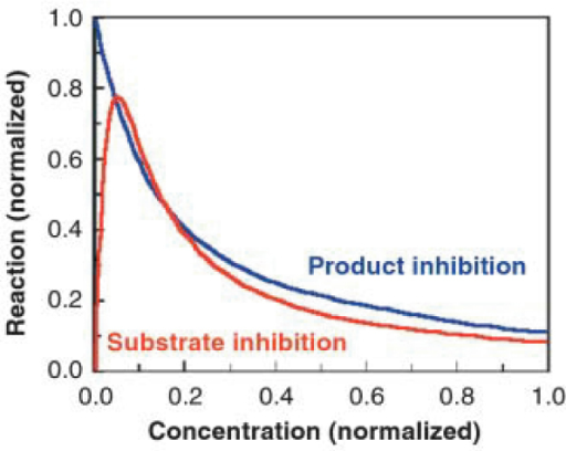 Idealized Example Of Product And Substrate Inhibition O Open I