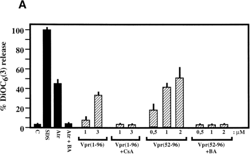 Effects of Vpr on the PTPC or PTPC components reconstituted into liposomes. (A) Effect of Vpr on purified PTPCs. PTPCs were reconstituted into phosphatidylcholine/cholesterol liposomes  26. These PTPC liposomes were loaded with DiOC6(3), the retention of which was measured after treatment with SDS (0.1%), Atr (250 μM), or the indicated Vpr peptides ± BA (50 μM) or CsA (1μM), as detailed in Materials and Methods. (B) Effect of Vpr on liposomes containing purified individual proteins. Phosphatidylcholine/cardiolipin liposomes containing ANT (from rat heart), Bcl-2 (recombinant), and/or Bax (recombinant) at a molar ratio of 4:4:1 were treated with SDS (0.1%), Atr (100 μM), or Vpr52-96 (1 μM), followed by determination of DiOC6(3) release. Data are representative of three independent experiments.