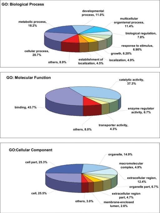 Assignment of Gene Ontology (GO) terms for putative excretory-secretory proteins.Components, such as Biological Process, Molecular Function and Cellular Component, are indicated. Individual GO categories can have multiple mappings. Percentages shown reflect the total categories annotated and not the total sequences annotated under each component.