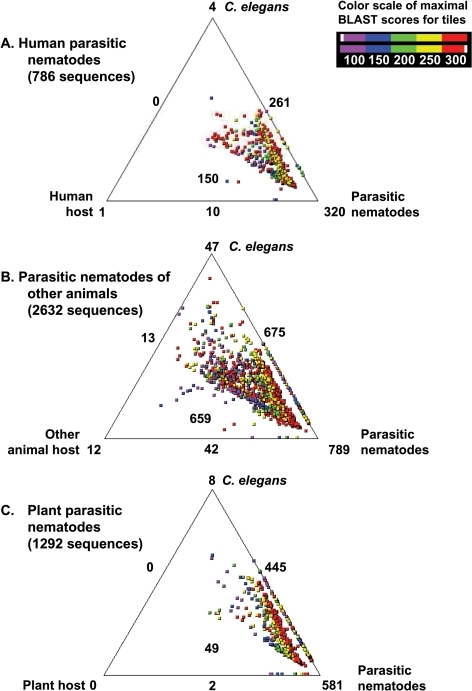 Comparison of ES proteins with the respective C. elegans, parasitic nematodes and host orthologues using SimiTri.Data for parasitic nematodes of A. humans, B. other animals or C. plants are presented, compared with their respective host organism. The numbers at each vertex indicate the number of ES proteins matching only the specific database. The numbers on the edges indicate the number of ES proteins matching the two databases linked by that edge. The boxed number within each triangle indicates the number of ES proteins with matches to all three datasets compared: C. elegans, parasitic nematodes and host databases.