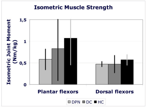 Maximal, voluntary, isometric strength of plantar and dorsal flexor muscle groups for health elderly (black bars), people with diabetes without polyneuropathy (dark grey bars) and people with diabetic polyneuropathy (light grey bars). Muscle strength is expressed as the joint moment exerted in a dynamometer normalized for body mass (Nm/kg). Bars represent mean values for a group; standard deviations are presented as vertical lines.