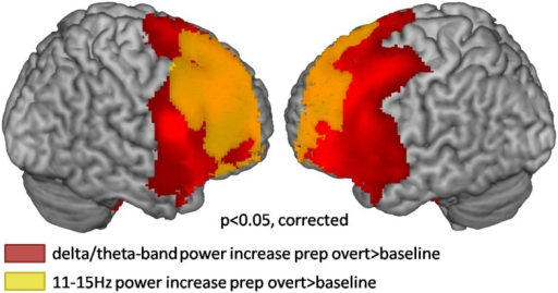 Source localization of broadband low frequency effects during the first second of preparation for overt reading compared to baseline (cluster corrected p < 0.05). Warm colors represent power increases.