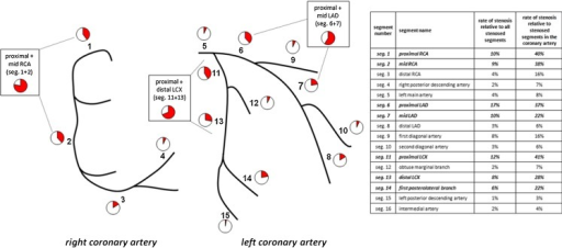Prevalence of relevant coronary artery stenoses in the different coronary segments