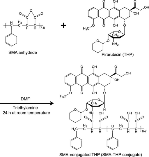 Synthesis of styrene–maleic acid copolymer (SMA)-conjugated pirarubicin (THP) (SMA-THP conjugate). Chemical structures and conjugation pathway. DMF, N,N-dimethylformamide.