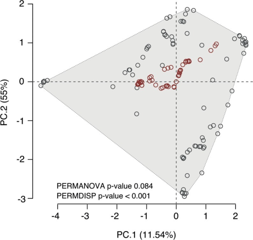 Principal Component Analysis (PCA) of the environmental space used by native (grey circles) and non-native (red circles) occurrences of M. galloprovincialis.The grey polygon indicates the overall environmental space of the species. The significance levels of the permutational multivariate ANOVA (PERMANOVA) and permutational analysis of multivariate dispersion (PERMDISP) to test for niche divergence between native and non-native ranges are shown.