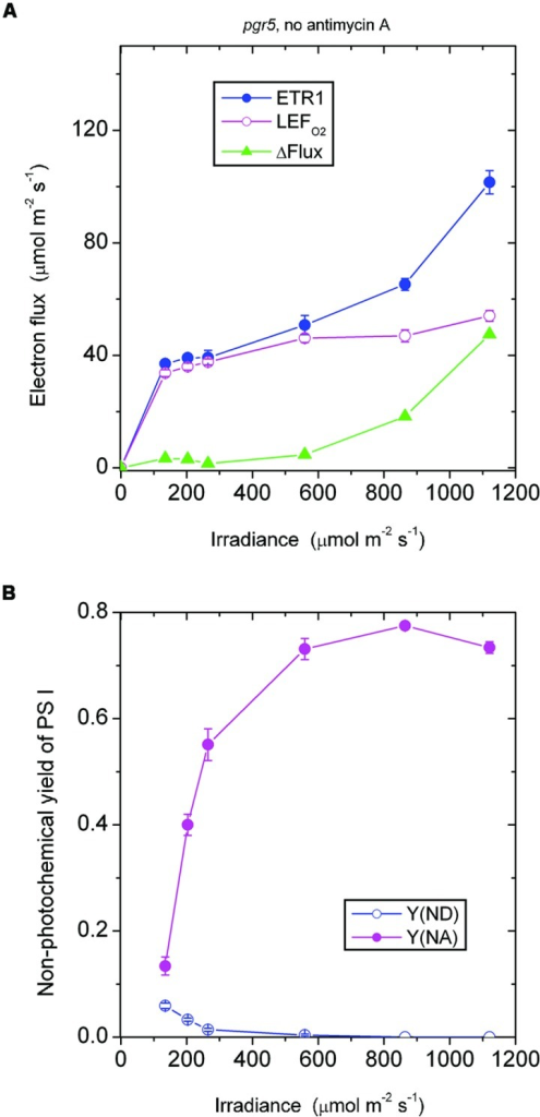 Response of steady-state ETR1, LEFO2 and ΔFlux (A), and Y(ND) and Y(NA) (B) in leaf disks of the pgr5 mutant to irradiance in the absence of antimycin A. Values are means ± SE. (n = 16 leaf disks). Other conditions are as in Figure 1.