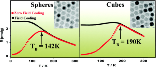 Monodisperse IONPs with spherical and cubic morphologies are prepared by the thermal decomposition of FeOOH, and exhibit very different blocking temperatures. (Reprinted with permission from R Chalasani and S Vasudevan 2011 J. Phys. Chem. C 115 18088. Copyright 2010 American Chemical Society.)
