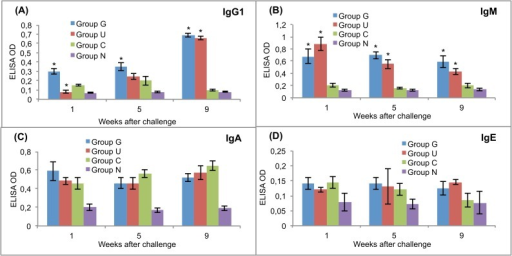 Post-challenge serum antibody isotype responses of vaccinated and control rats to recombinant cysteine proteinase.(A) IgG1. (B) IgM. (C) IgA. (D) IgE. Group G–Lyophilised lettuce expressing the mature CPFhW enzyme flanked by Gly-rich linkers; Group U–Lyophilised lettuce expressing the mature CPFhW protein fused with ubiquitin; Group C–Lyophilised control lettuce; Group N–None. At each timepoint, four rats from each group were euthanised and dissected. *Indicates significantly increased numbers of cells (p<0.05). Error bars indicate standard deviation.