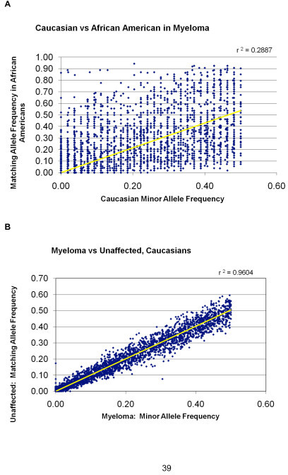 Racial allelic frequency patterns. A) Diagonal plot comparing minor allele frequencies between BOAC SNPs of Caucasian versus African American myeloma patients. Note high rate of allelic variation. B) Diagonal plot comparing minor allele frequencies between BOAC SNPs of Caucasian myeloma patients versus unaffected Caucasians.