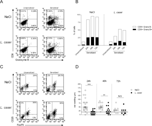 Effect of L. casei on CD8+ effectors and FoxP3+ regulatory T cells in the skin.Total cells were extracted from ears of either L. casei treated or NaCl mice that were either unsensitized, or DNFB-sensitized and harvested at 24 h, 48 h and 72 h post DNFB ear challenge. (A) Dot plot FACS analysis on gated CD45+ cells of ear cell suspensions staining for CD8 and granzyme B at 48 hr post challenge. (B) Histograms representation of the percentage of granzyme B+ CD8+ T cells (black portion) and granzyme B− CD8+: white portion) among gated CD45+ leucocytes from NaCl- (left) and L. Casei (right) treated mice at various time point after ear challenge. (C) Dot plot FACS analysis of gated CD45+×CD4+ T cells after ear cell suspensions stained for CD4, CD25 and FoxP3 at 48 hr post DNFB challenge in naïve (left) or sensitized (right) mice, treated with NaCl (top) or L. Casei (bottom). (D) Corresponding ear swelling at 24 h, 48 h and 72 h post- DNFB challenge in DNFB sensitized mice, treated with NaCl (white circles) or L. casei (black circles).