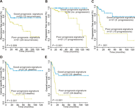 Kaplan-Meier estimations in primary bladder cancer with gene signatures based on microarray analysis of the original training cohort. Kaplan-Meier curves of (A) recurrence (B) and progression in NMIBC. Kaplan-Meier curves of (C) progression, (D) cancer-specific survival and (E) overall survival in MIBC.